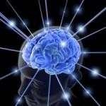Kecerdasan Otak Manusia