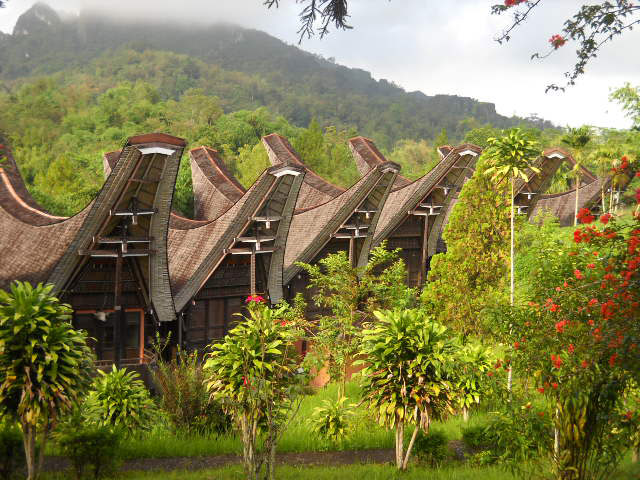 Beautiful of Toraja